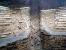Τομή κυκλικού κλιβάνου κεραμικής (ΜΕΤΡΟ Ευαγγελισμός) - Ωρίωνας Μ